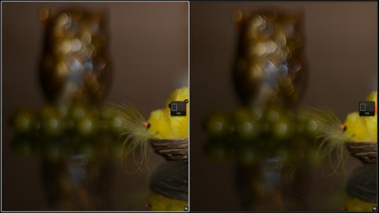 Nikon AF-S 50mm f/1.8G vs Nikon AF 50mm f/1.8D @ f/1.8